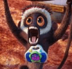 steve_monkey